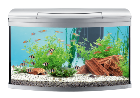 AquaArt Evolution Line Aquarium Complete 100L